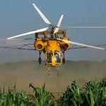 Услуги вертолета - авиаобработка кукурузы инсектицидами