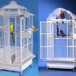 Корма, витамины, клетки, насесты для попугаев из чехии, бельгии