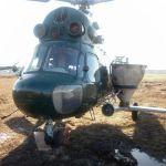Услуги вертолета по подкормке рапса минудобрениями